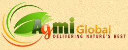 Agmi Global LLC Logo